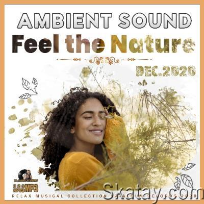 Feel The Nature: Ambient Sound (2020)