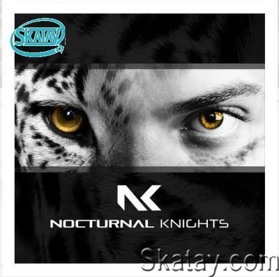 Daniel Skyver & Mercurial Virus - Nocturnal Knights 072 (2021-01-12)